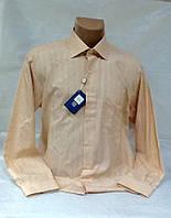 Рубашка мужская Mastae Ferretti оригинал, фото 1