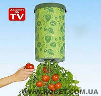 Устройство  для выращивания помидоров Upside Down Tomato Planter