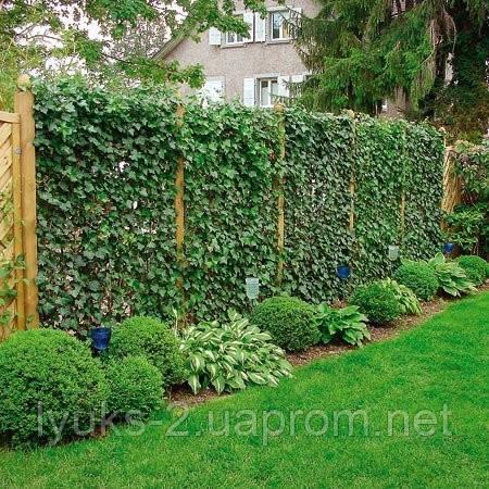 Как облагородить забор из сетки?