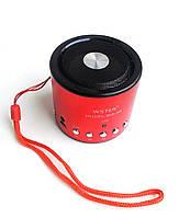 Портативная колонка WSTER WS-A8 MP3, FM, USB