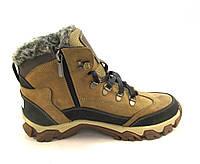 Ботинки подросток SBF кожаные с мехом бежевые(р.36,37,38,39)
