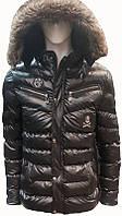 Куртка (пуховик) мужская зимняя Philipp Plein