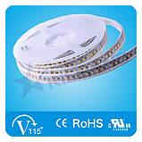 Белая 9,0W SMD3528 (120 LED/м) 7110-7700K (waterproof) IP68 Rishang Premium, фото 2