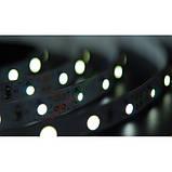 Лента светодиодная (синий свет) 4,8W SMD3528 (60 LED/м) Indoor IP20, фото 2