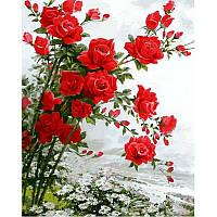 """Картины раскраски по номерам """"Розы на ромашковом поле"""" набор для творчества"""