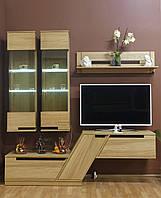 Деревянная мебель для гостинной в стиле модерн