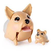 Spin Master Игровой набор Chubby Puppies из 2 фигурок - Йоркширский терьер