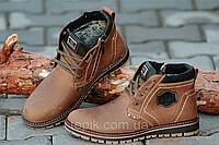 Зимние мужские ботинки на замке и шнурках, натуральная кожа, мех коричневые 2017 (Код: М912)