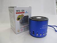 Портативная колонка WS-Q9. Bluetooth