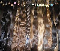 Натуральные славянские волосы в срезе 50-75 см в ассортименте
