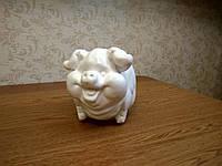 Гипсовая 3-D раскраска свинка копилка