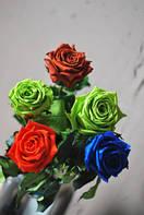 Неувядающая долгосвежая живая роза FLORICH