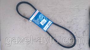 Ремень AVX13x1040 привода вентилятора Газель Бизнес дв. 4216 (пр-во Bosch) зубчатый