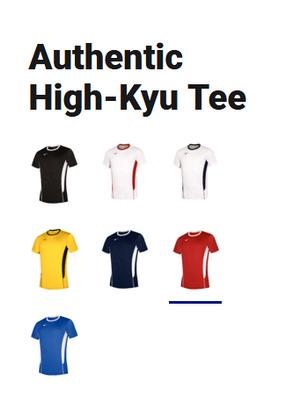 Волейбольная футболка Mizuno Authentic High-Kyu Tee V2EA7001-62, фото 2