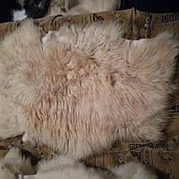 Овечья шкура натуральная. Длинный ворс,густой 80*60 см ворс 10 см