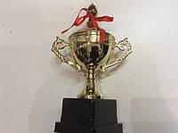 Кубок 24,5 см. из металлизированного пластика на основании, фото 1