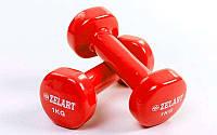 Гантели для фитнеса с виниловым покрытием Beauty (2x1кг) TA-5225-1