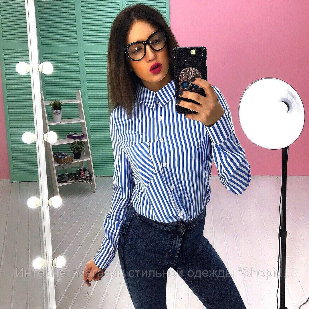 ce62d7bc374 Женская красивая рубашка в полоску (3 цвета)  продажа