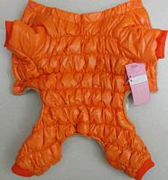 Теплый комбинезон для собаки (Код: 0238)