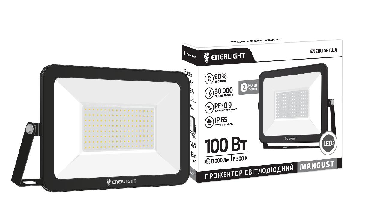 Светодиодный LED прожектор 100 Вт 6500К 8000 Lm IP65 ENERLIGHT