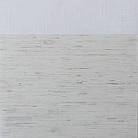 Рулонные шторы День ночь Ткань Гавана Белый