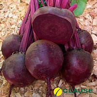 Семена свеклы Нобол (Clause) 1 кг - ранняя сортовая (70-90 дней), круглая, столовая.