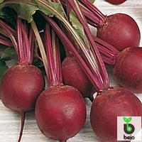 Семена свеклы Пабло F1 5000 семян (Бейо/Bejo) — среднепоздний гибрид (105-108 дней), круглая, столовая.