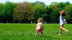 Газонна трава Спортивно-ігрова