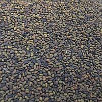 Семена люцерна микрозелень