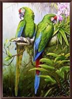 Алмазная вышивка, попугаи 30х40 см
