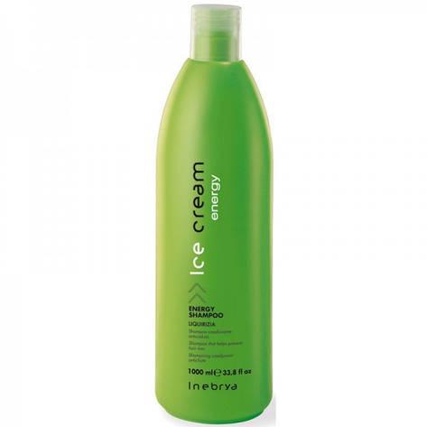 Шампунь энергетический против выпадения волос Energy 1000 мл inebrya, фото 2