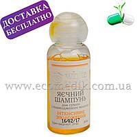 Пробник шампуня Яичный для сухих и ослабленных волос White Mandarin 30 мл