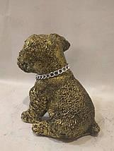 Статуэтка (копилка) щенок Шнауцера золото, фото 3