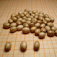 Бусина деревянная, зерно  6*8 мм