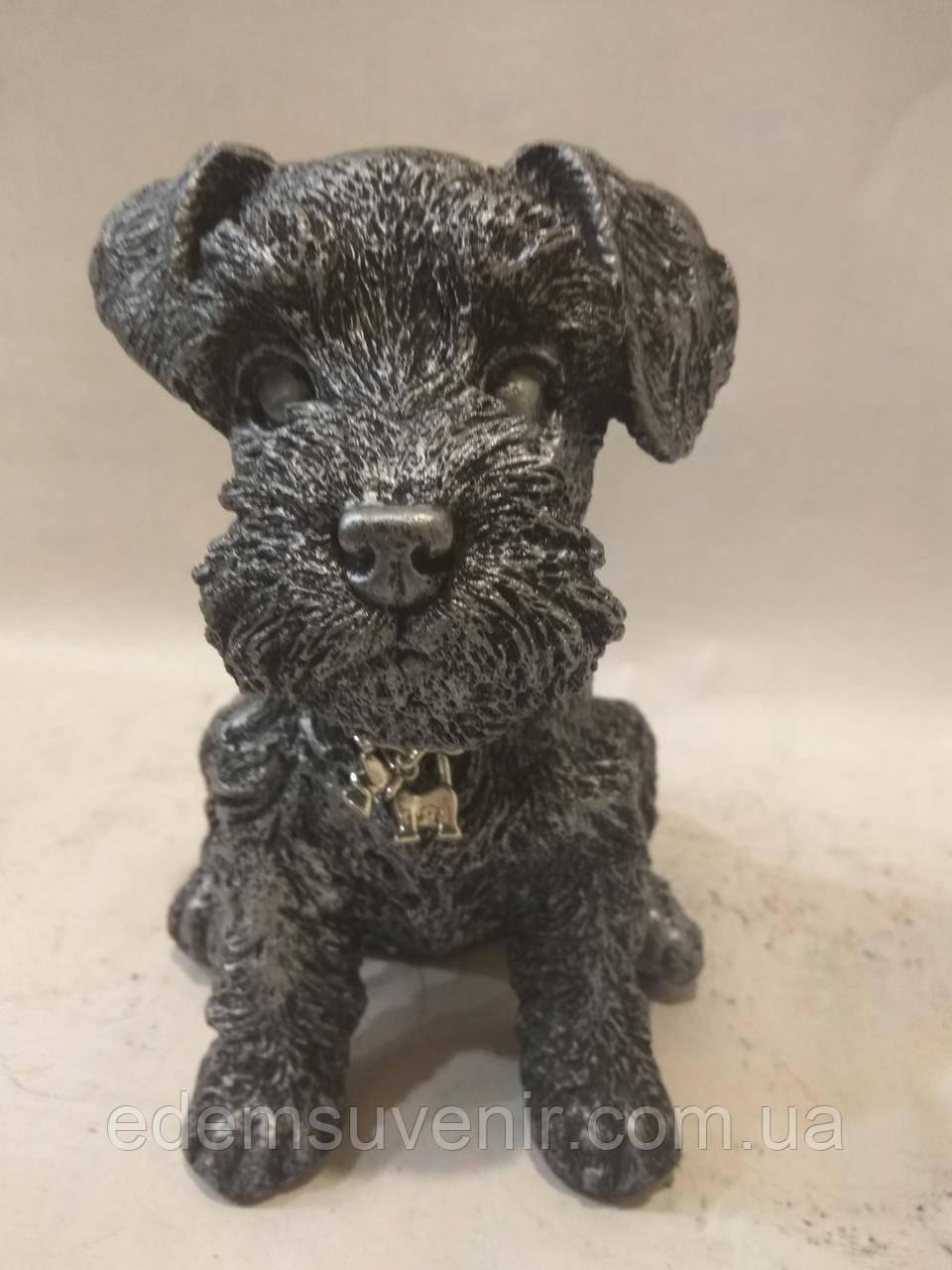 Статуэтка (копилка) щенок Шнауцера серебро