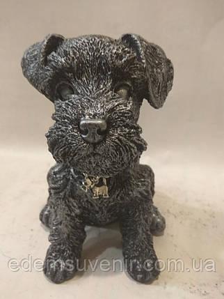 Статуэтка (копилка) щенок Шнауцера серебро, фото 2