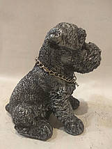 Статуэтка (копилка) щенок Шнауцера серебро, фото 3