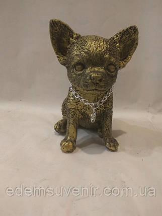 Статуэтка (копилка) щенок Чихуа золото, фото 2