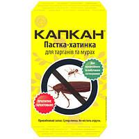 КАПКАН клеевая ловушка-домик от тараканов и муравьев, Украина