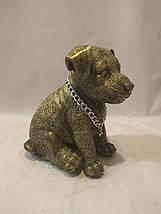 Статуэтка (копилка) собака щенок Джек рассел золото, фото 2