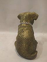 Статуэтка (копилка) собака щенок Джек рассел золото, фото 3