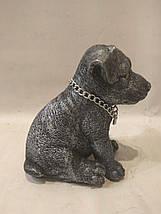 Статуэтка (копилка) собака щенок Джек рассел серебро, фото 3