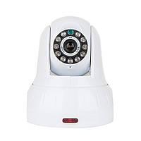 Беспроводная IP камера Tecsar Alert EYE