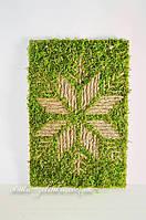 Декор со мхом стабилизированным от Студии Зеленка