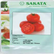 Томат Линда F1, 1000 сем. — семена детерминантного, крупноплодного томата, фото 3