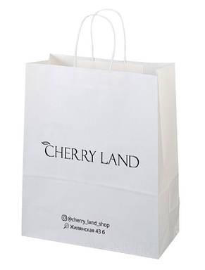 Пакет бумажный белый с печатью 1 цвета 250х150х350, фото 2
