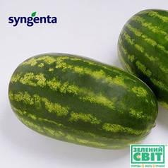 Семена арбуза Фарао F1 (Syngenta) 1000 семян — (65-70 дней), удлиненной формы, СЛАДКИЙ! вес 15-18 (до 35) кг