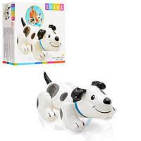 Детский надувной плотик Intex 57521, щенок-TDN
