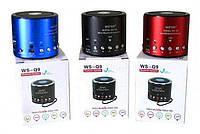 Портативная колонка WS-Q9-TDN