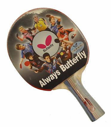 Ракетка для настолького тениса Batterfly 4*, фото 2